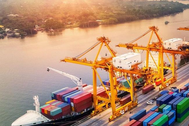 کشورهای صادر کننده زعفران | صادرات زعفران