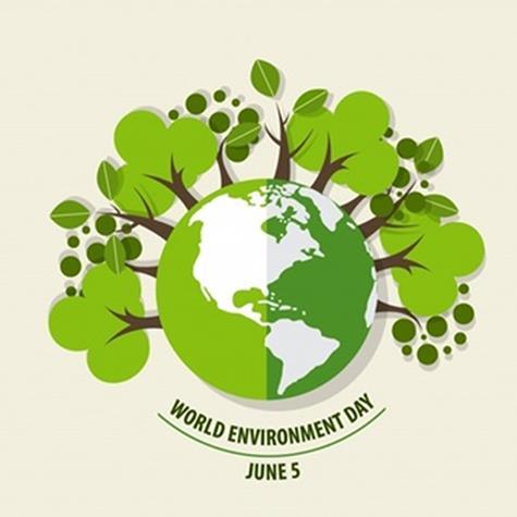 سازگاری با محیط زیست در آماده سازی بسته بندی برای زعفران صادراتی | شرکت صدف پک