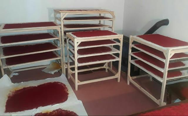 اهمیت خشک کردن در تولید زعفران با کیفیت   شرکت صدف پک