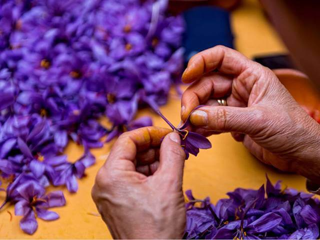 صفر تا صد راه اندازی بسته بندی زعفران در منزل | شرکت صدف پک