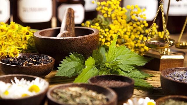 انواع گیاهان دارویی | شرکت صدف پک