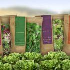 بسته بندی گیاهان دارویی | شرکت صدف پک